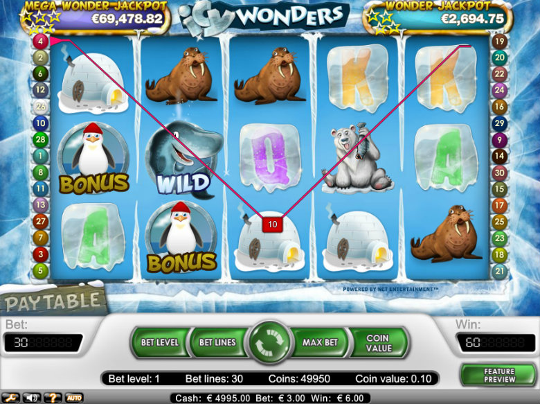 Icy Wonders - video slot