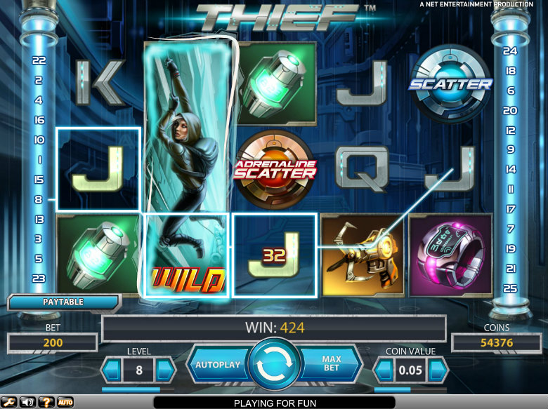 Thief Slot - video slot