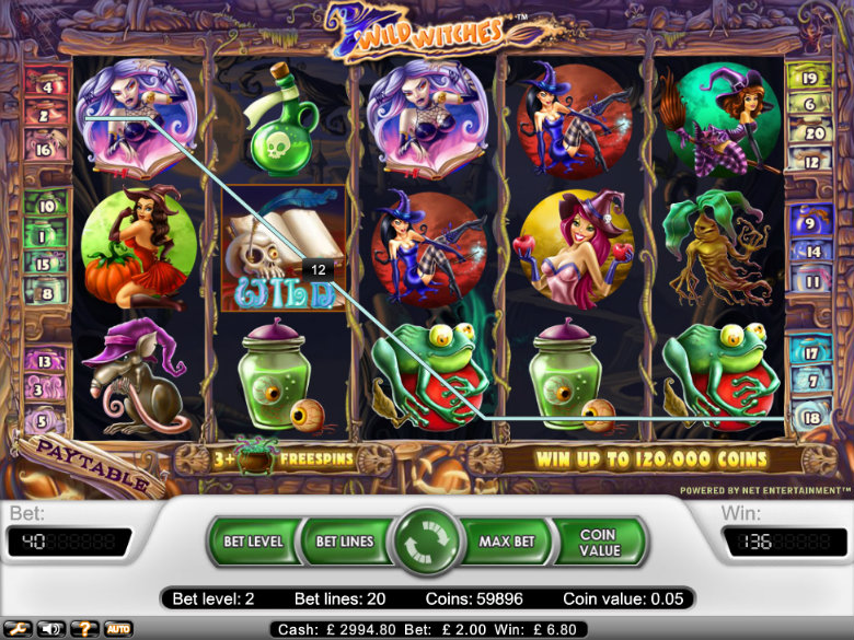 Spiele Wild Witches - Video Slots Online