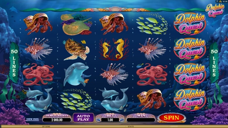 Dolphin Quest Video Slot