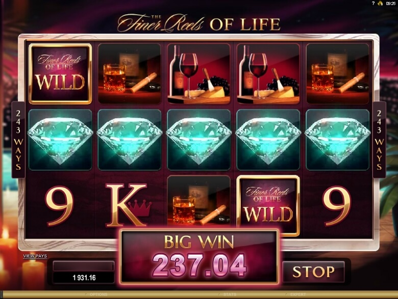 The Finer Reels of Life Slot Machine - Play Online for Free