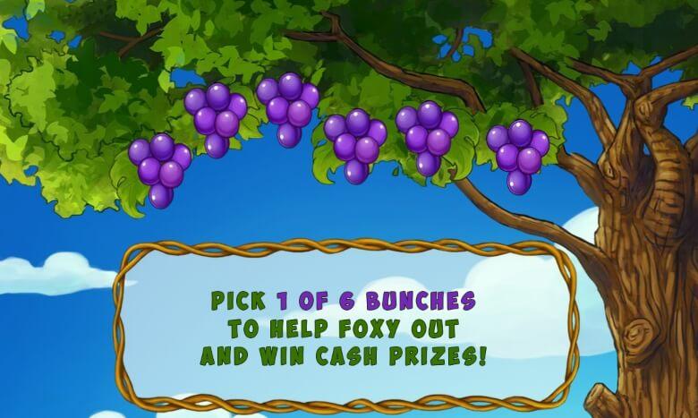 Foxy Fortunes video slot