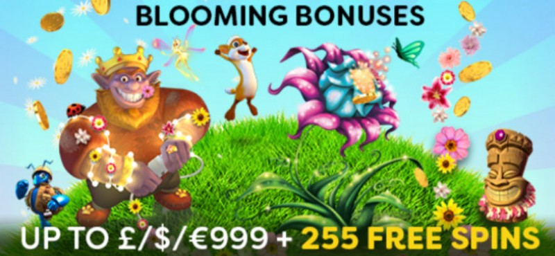 Blooming Bonuses At Fruity King Casino Image