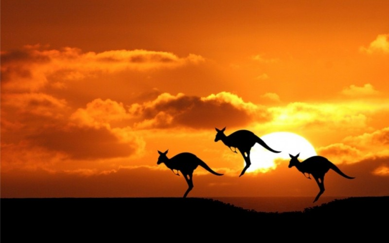 Top Aussie Themed Casinos Image