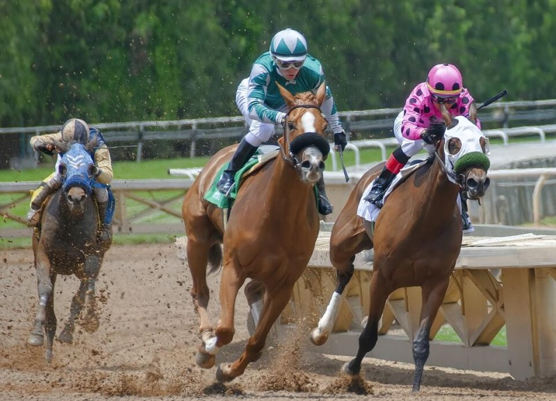Paved With Hoofprints: 9 Things You Should Know Before Going To Belmont Stakes Image
